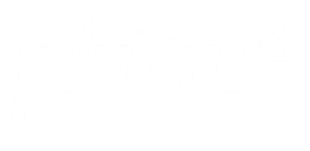logo_inverz